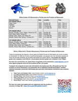 Girls Sonic Basketball Tryouts - Spanish