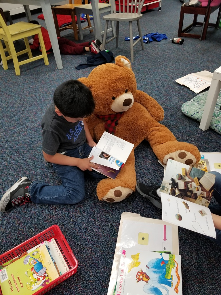 Student reading to stuffed animal.