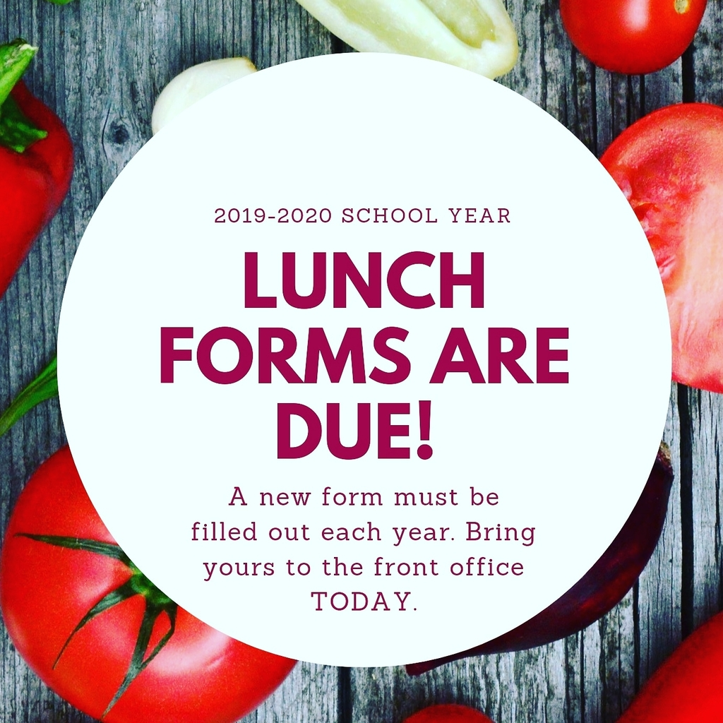 lunch forms