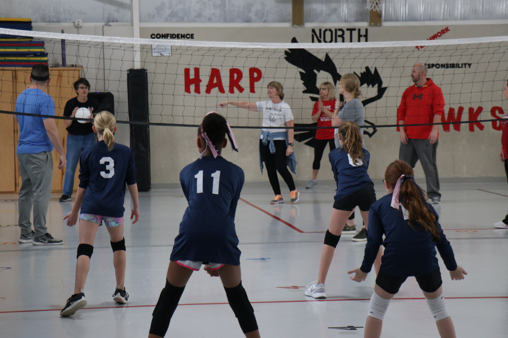 Harp Volleyball