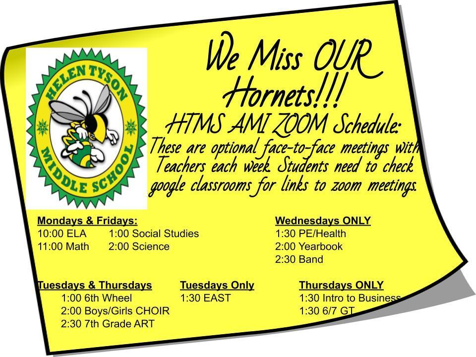 Zoom schedule for students