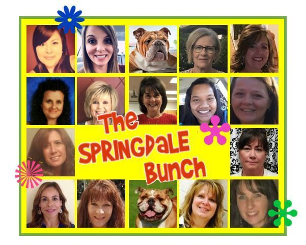 The Springdale Bunch